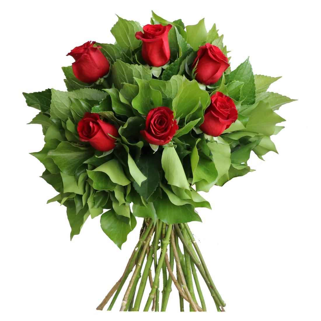 Amira - 6 Roses
