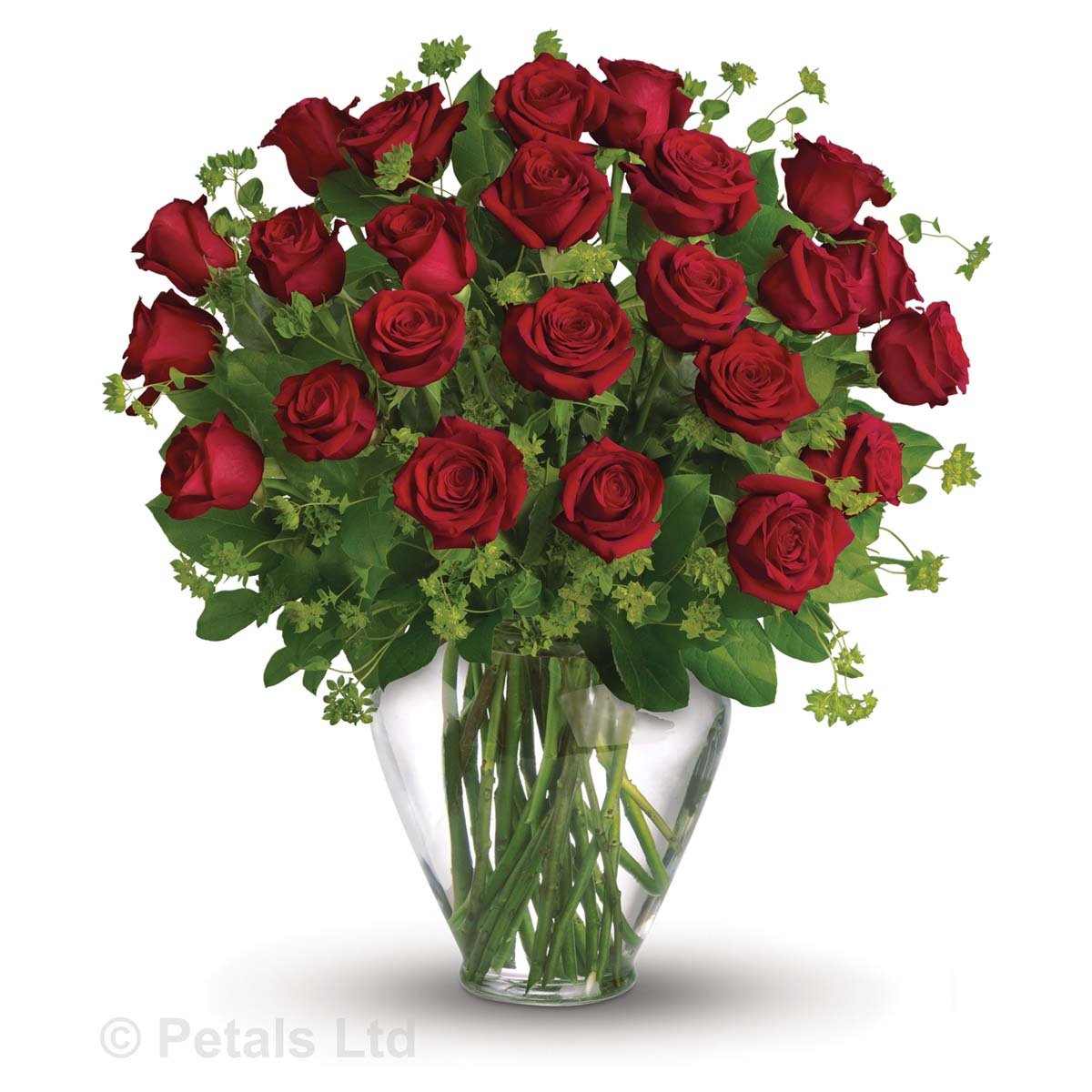 My Perfect Love 2 Dozen Red Roses